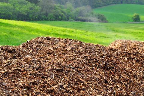 NESL Biomass Waste Management