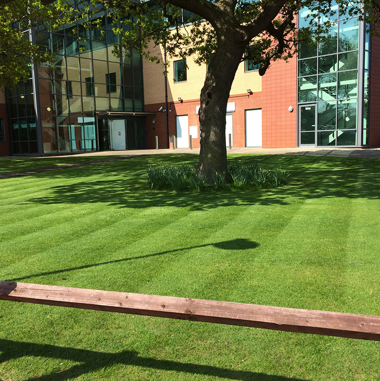 NESL Maintaining Grounds & Landscapes